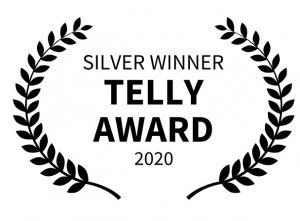 Silver Award Telly Winner